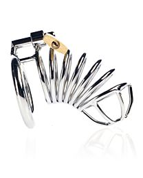 Spiral Male Chastity Device 1