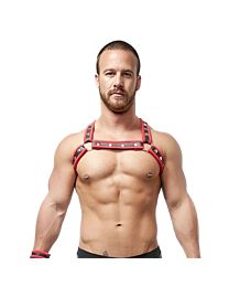 Mister B Neoprene X Back Harness Black Red 1