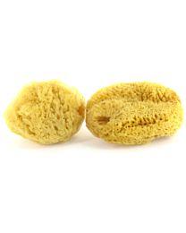 Sea Pearls Natural Sea Sponge Tampons 1
