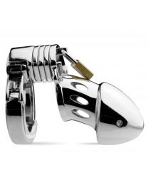 Master Series Incarcerator Adjustable Locking Chastity Cage 1