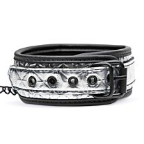 Master Series Platinum Bound Chained Collar with Leash 1