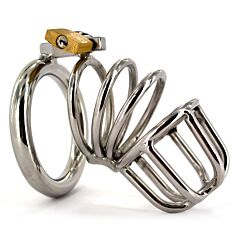 Spiral Stainless Steel Male Chastity Device 1