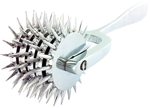 Five Head Wartenberg Pinwheel