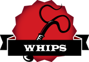 Beginner's Guide To Whips