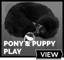 Pony Play - Giddyup